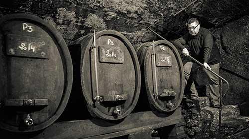 family cellar oenotourism guide pierre-fernandez châteauneuf-du-pape